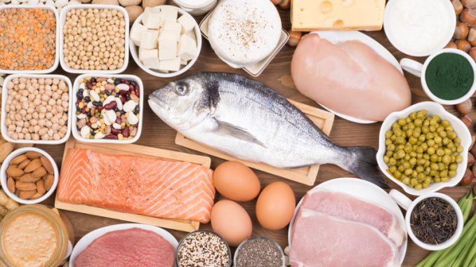 protein nedir, protein ile ilgili bilinmesi gerekenler, proteinler ne için kullanılır