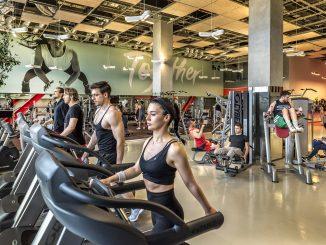 spor salonu tipleri, spor salonu kullanımı, spor salonundaki insanlar